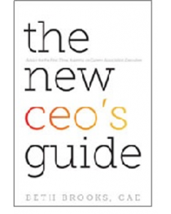 new ceo guide