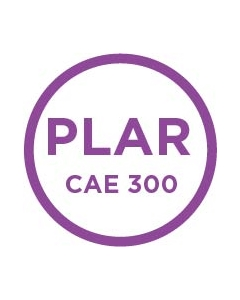 Prior Learning Assessment: CAE 300